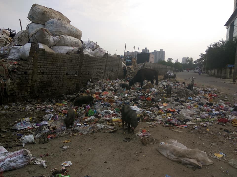 Image Kaushambi Sanitation