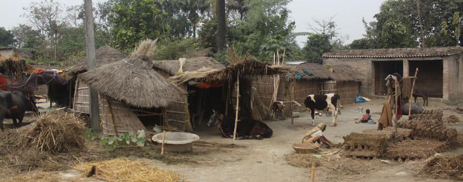 आंकड़ों में गांव