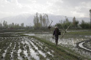 क्या सचमुच सरकार ने किसानों को फसल की लागत का ड्योढ़ा मूल्य दिया है?