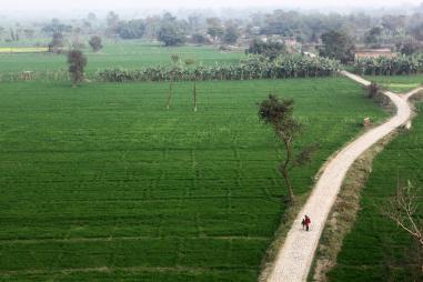 कीटनाशकों पर अंकुश से कम हो सकती हैं किसान-आत्महत्याएं- नई रिपोर्ट