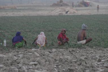 बजट 2018: घट गया पिछले साल के मुकाबले खेती-किसानी और ग्रामीण विकास का बजट